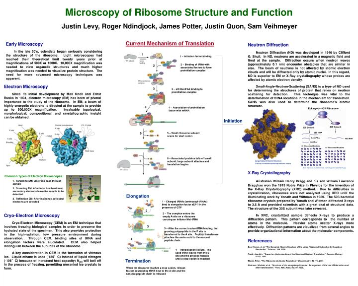 Microscopy of Ribosome Structure and Function
