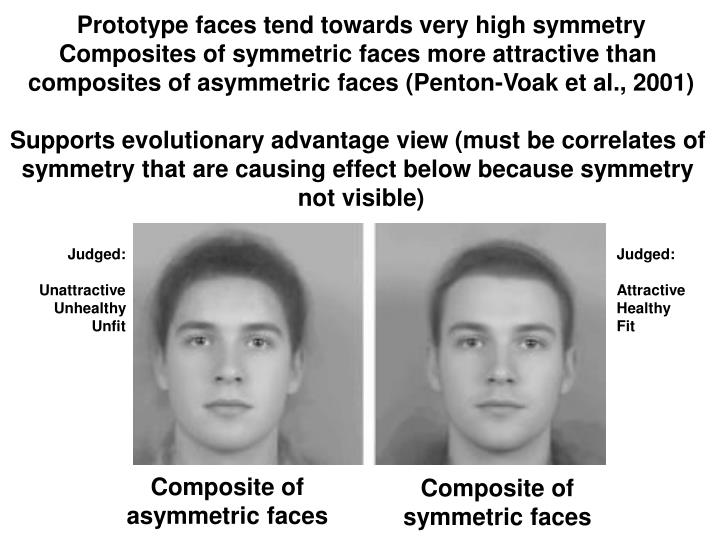 Prototype faces tend towards very high symmetry