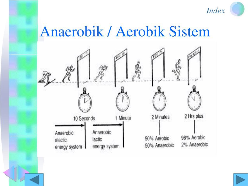 Anaerobik / Aerobik Sistem