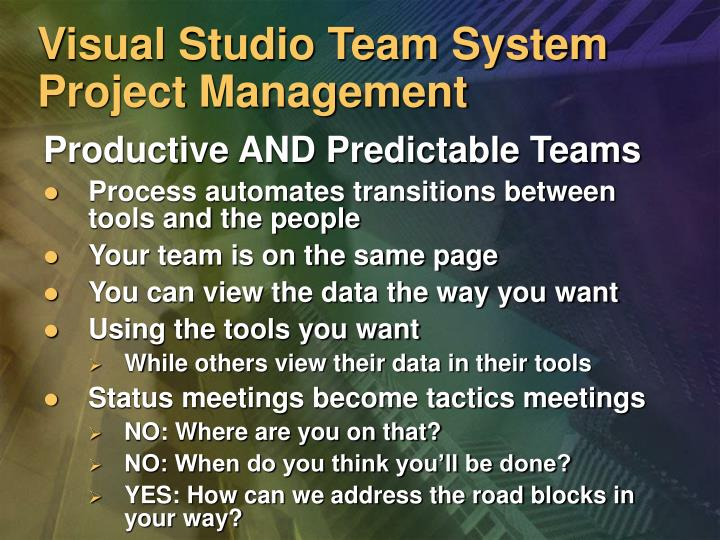 Visual Studio Team System Project Management