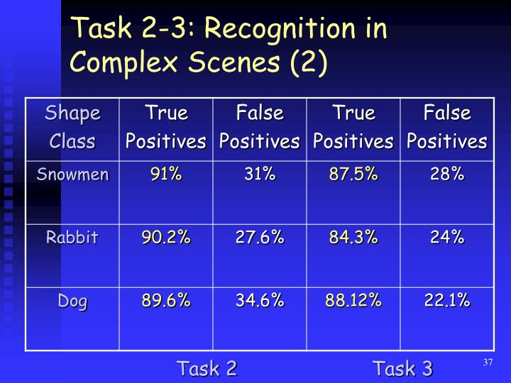 Task 2-3: Recognition in Complex Scenes (2)