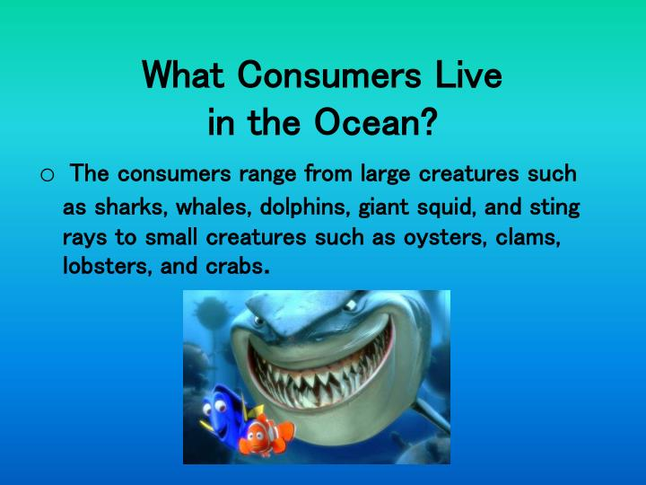What Consumers Live
