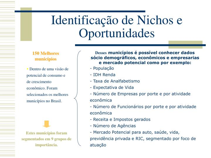 Identificação de Nichos e Oportunidades