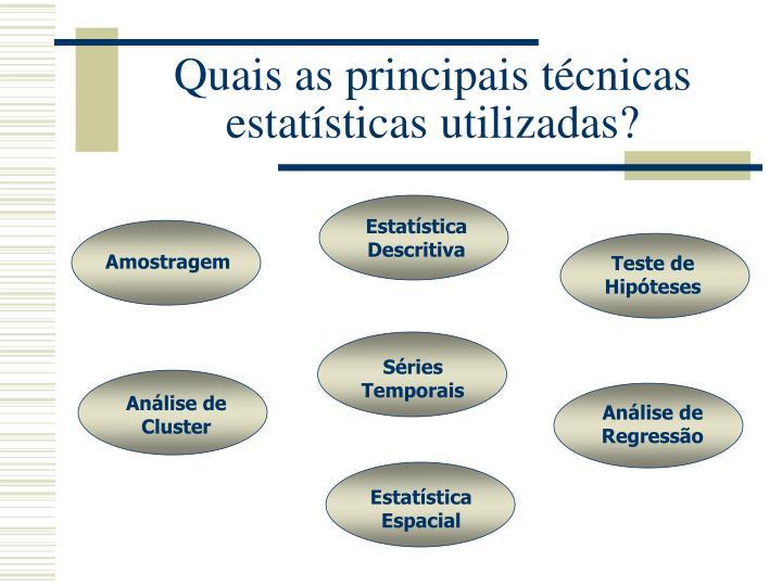 Quais as principais técnicas estatísticas utilizadas?