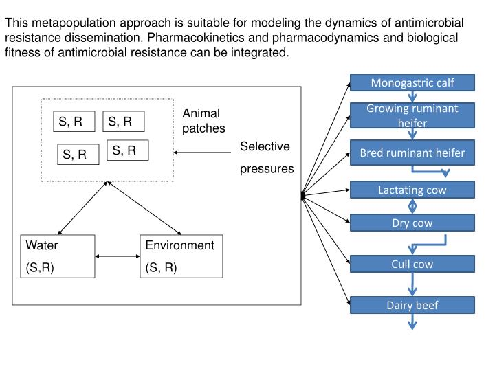 This metapopulation approach is suitable for modeling the dynamics of antimicrobial resistance dissemination. Pharmacokinetics and pharmacodynamics and biological fitness of antimicrobial resistance can be integrated.