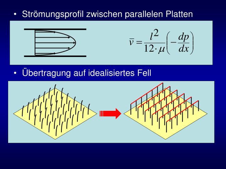 Strömungsprofil zwischen parallelen Platten