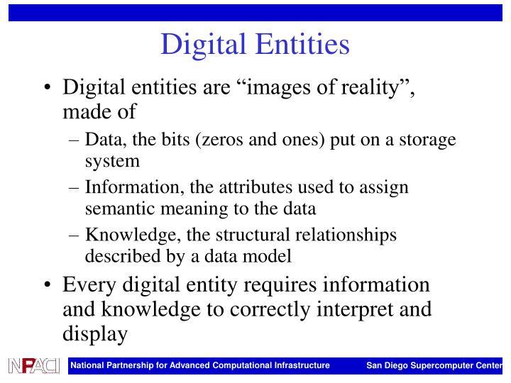 Digital Entities