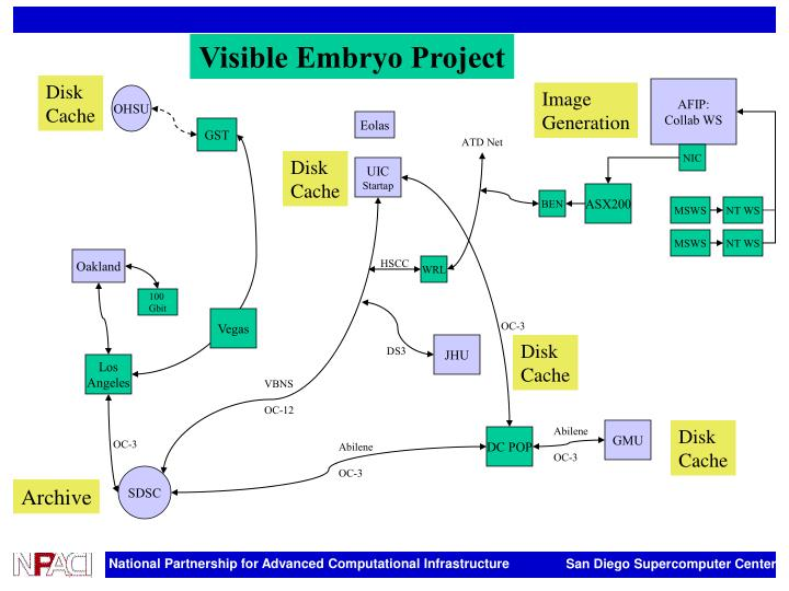 Visible Embryo Project