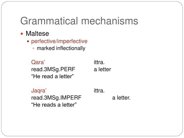 Grammatical mechanisms