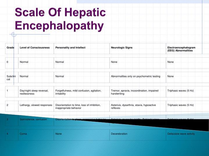 Scale Of Hepatic Encephalopathy
