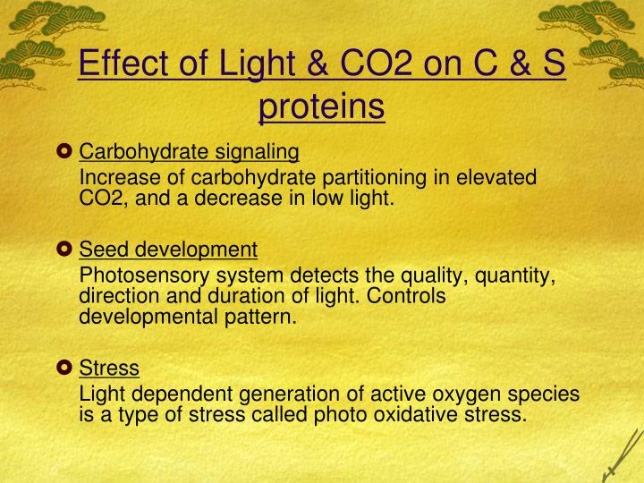 Effect of Light & CO2 on C & S proteins