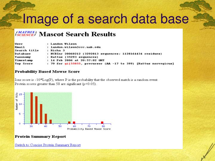 Image of a search data base