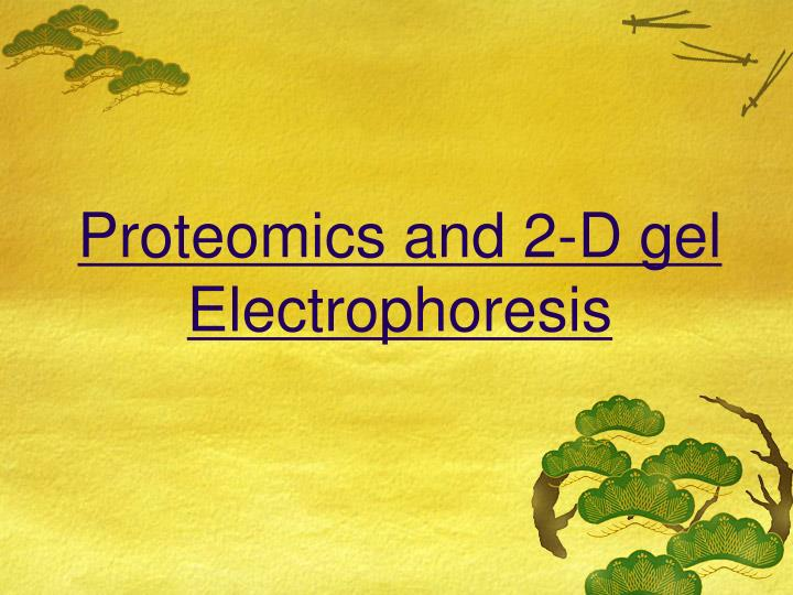 Proteomics and 2-D gel Electrophoresis