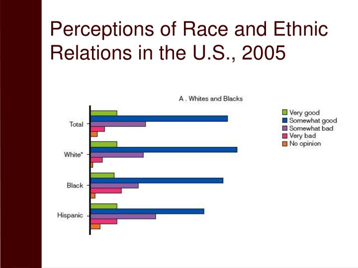 Perceptions of Race and Ethnic