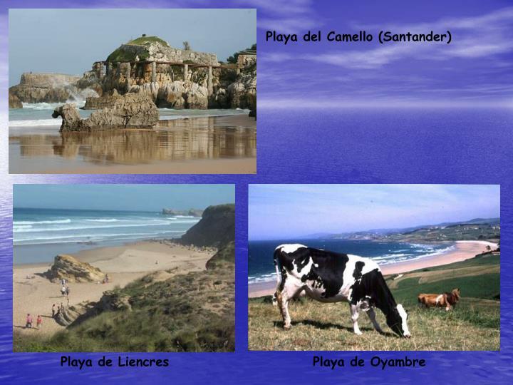 Playa del Camello (Santander)