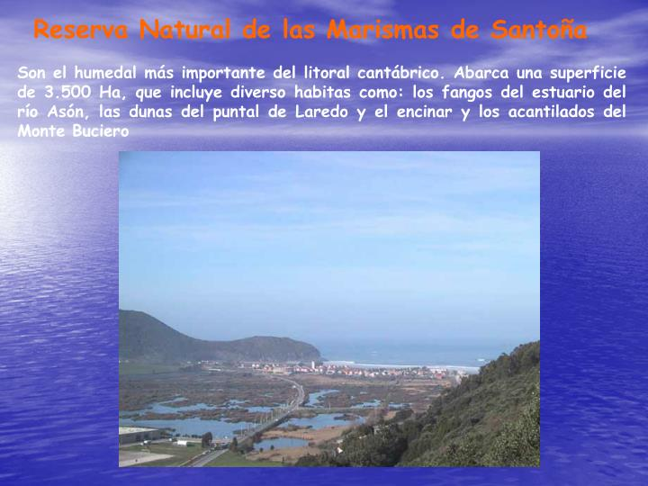 Reserva Natural de las Marismas de Santoña