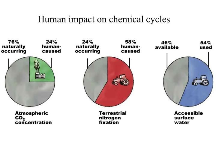 human impacts on the carbon nitrogen Get an answer for 'give specific examples of each cycle and how humans impact  nitrogen cycle, phosphorus cycle, and carbon cycle ' and find homework.
