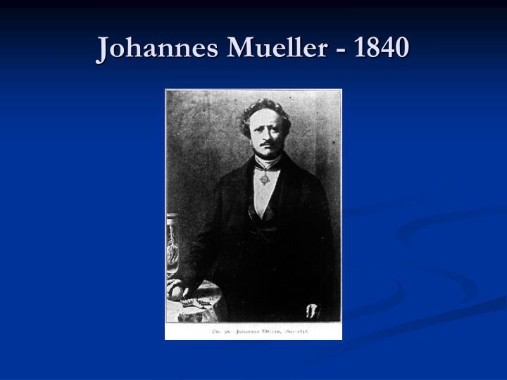 Johannes Mueller - 1840