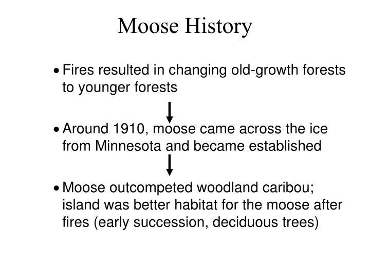 Moose History