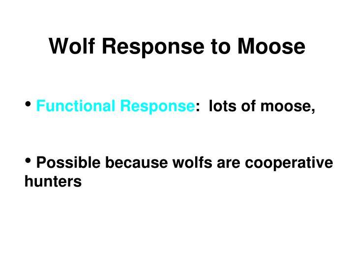 Wolf Response to Moose