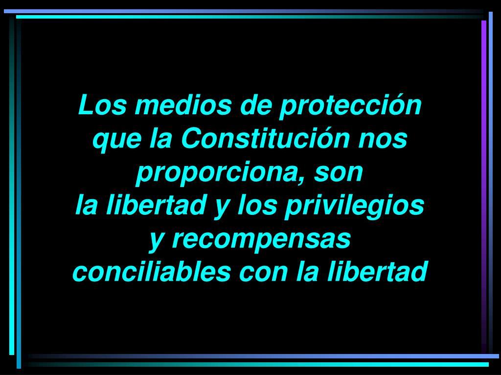 Los medios de protección que la Constitución nos proporciona, son