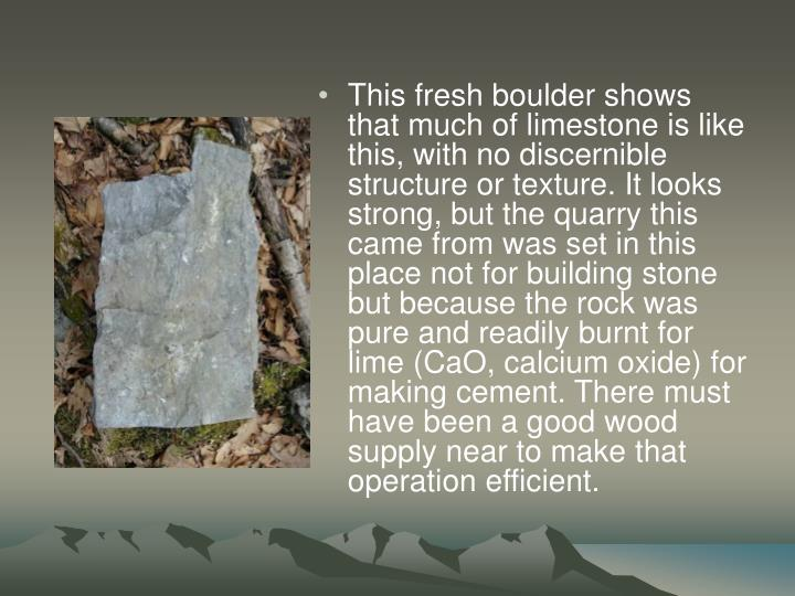 This fresh boulder shows that much of limestone is like this, with no discernible structure or texture. It looks strong, but the quarry this came from was set in this place not for building stone but because the rock was pure and readily burnt for lime (CaO, calcium oxide) for making cement. There must have been a good wood supply near to make that operation efficient.