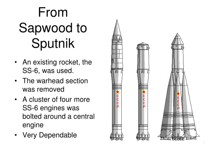 From Sapwood to Sputnik