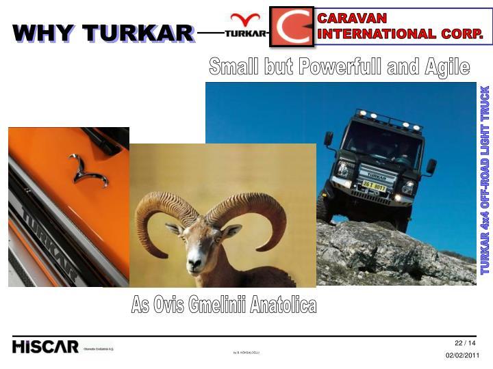 CARAVAN INTERNATIONAL CORP.