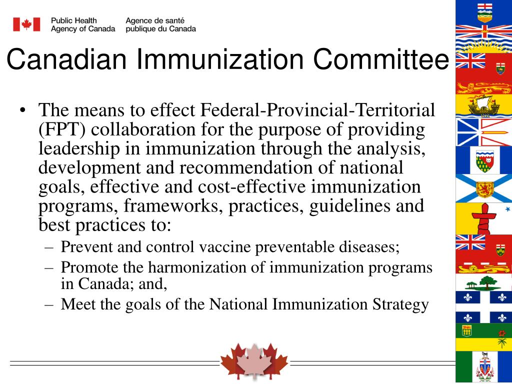 The means to effect Federal-Provincial-Territorial (FPT) collaboration for the purpose of providing leadership in immunization through the analysis, development and recommendation of national goals, effective and cost-effective immunization programs,