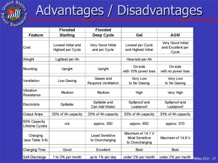 Advantages / Disadvantages