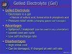 gelled electrolyte gel