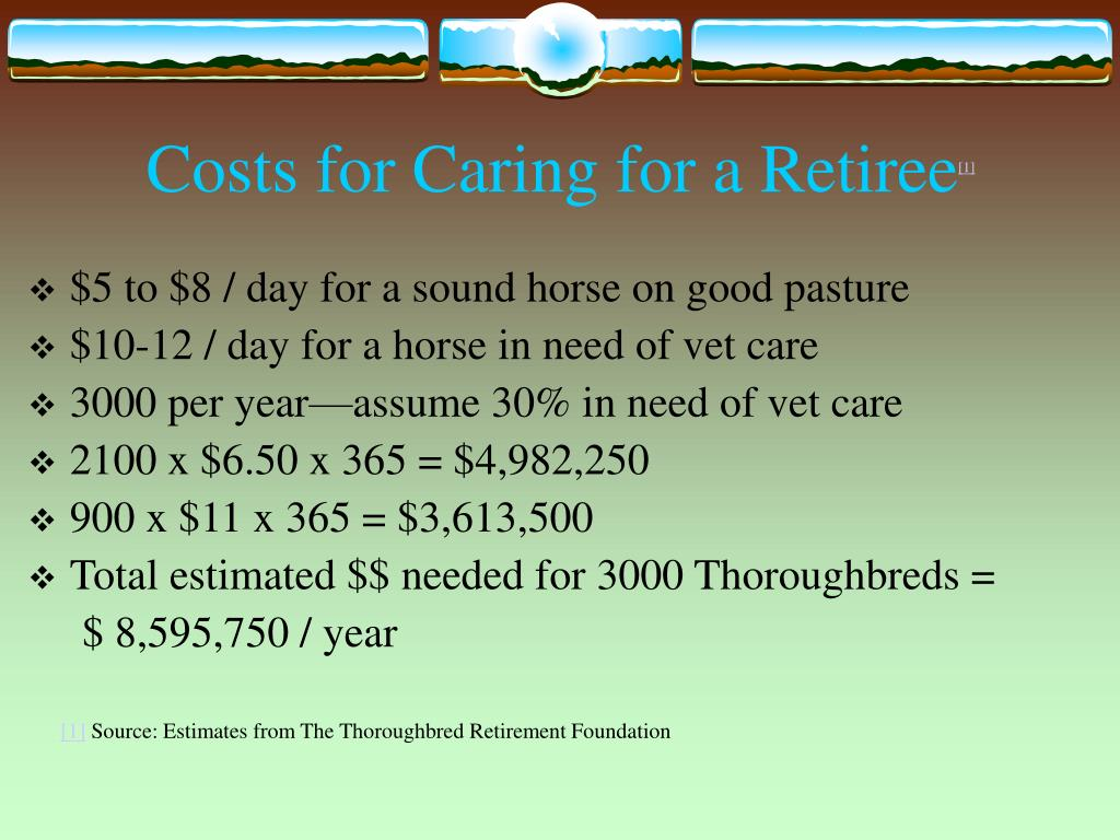 Costs for Caring for a Retiree
