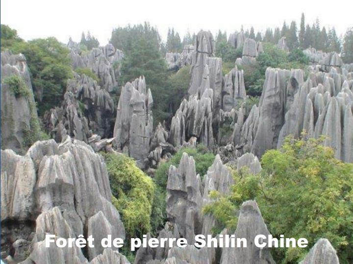 Forêt de pierre Shilin Chine