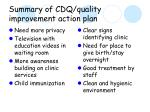 summary of cdq quality improvement action plan