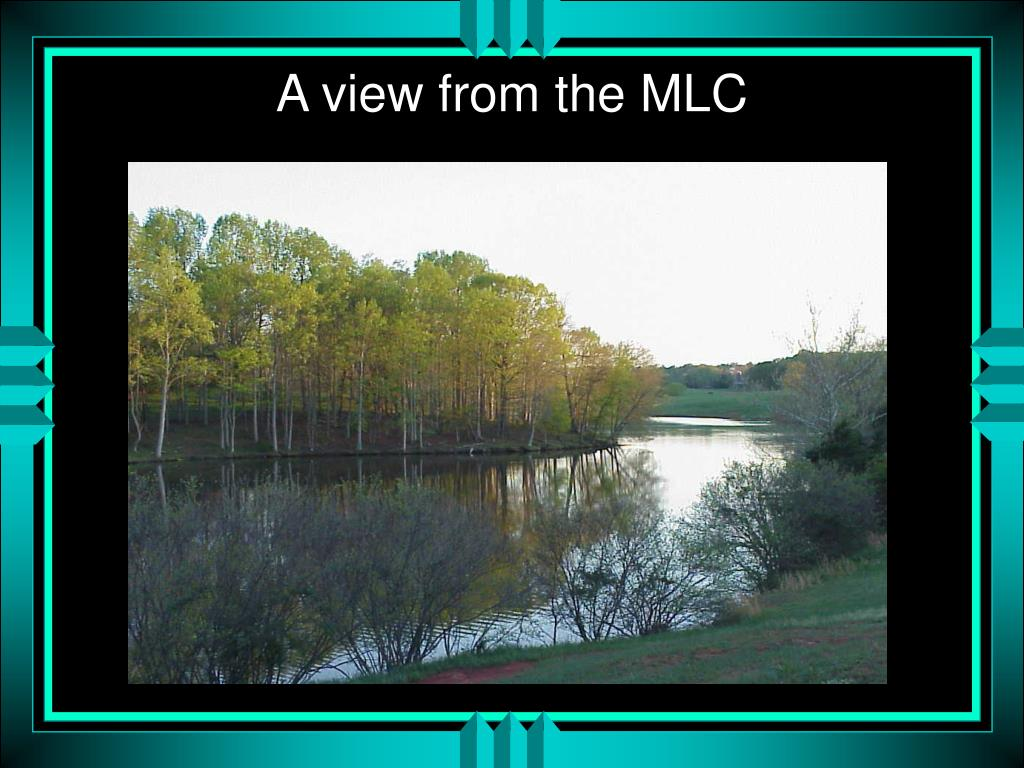 A view from the MLC