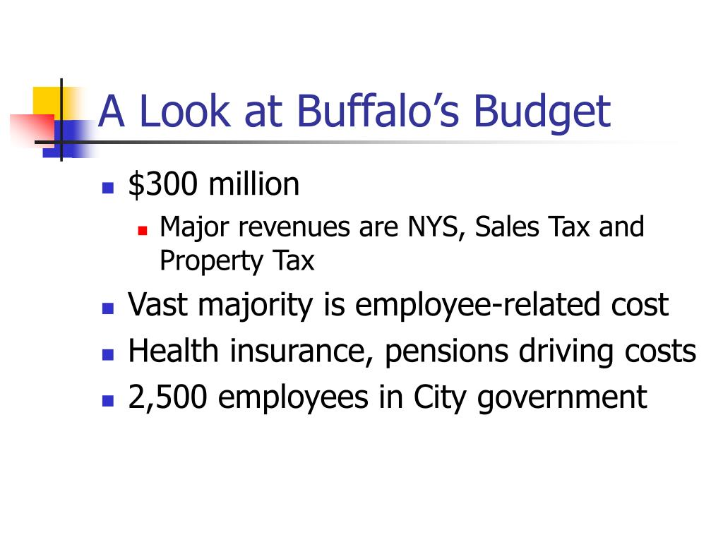 A Look at Buffalo's Budget