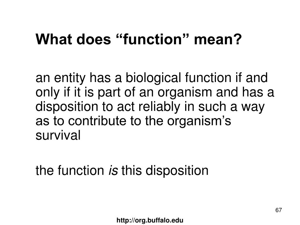 "What does ""function"" mean?"