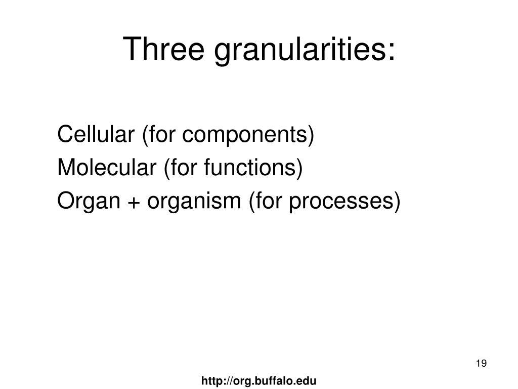 Three granularities: