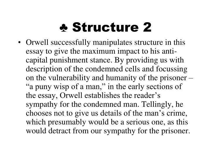 Anti Capital Punishment Essay