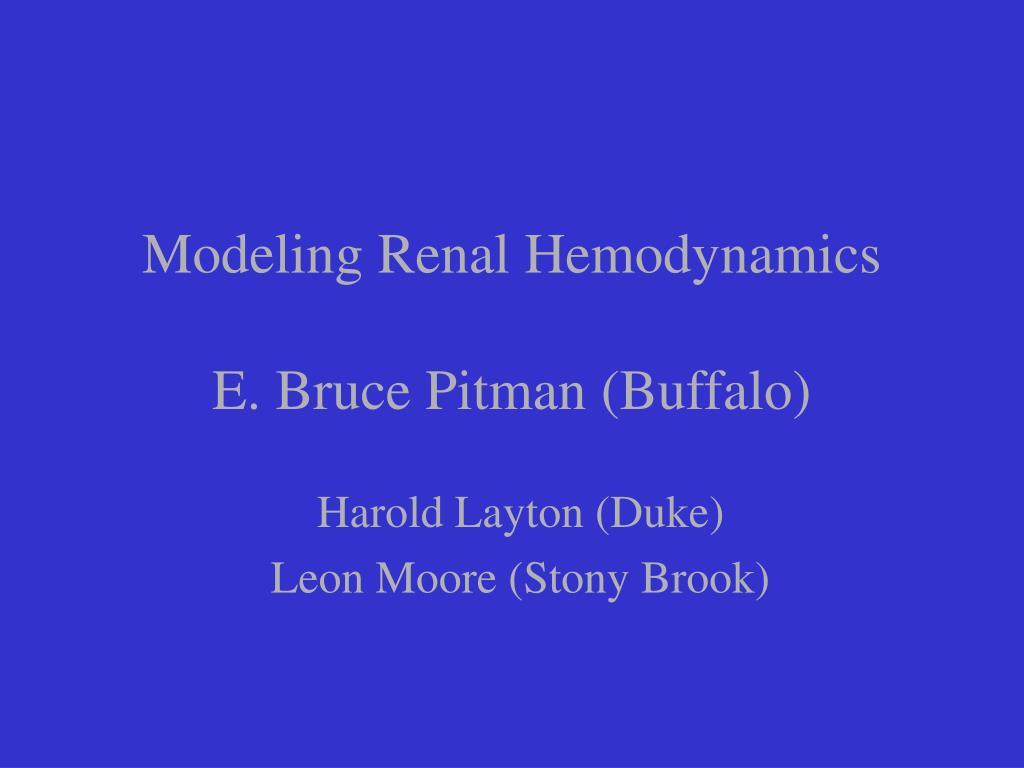 Modeling Renal Hemodynamics