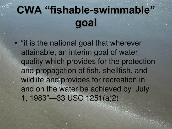 Cwa fishable swimmable goal
