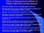 effects of management conditions on buffalo milk yield and reproduction