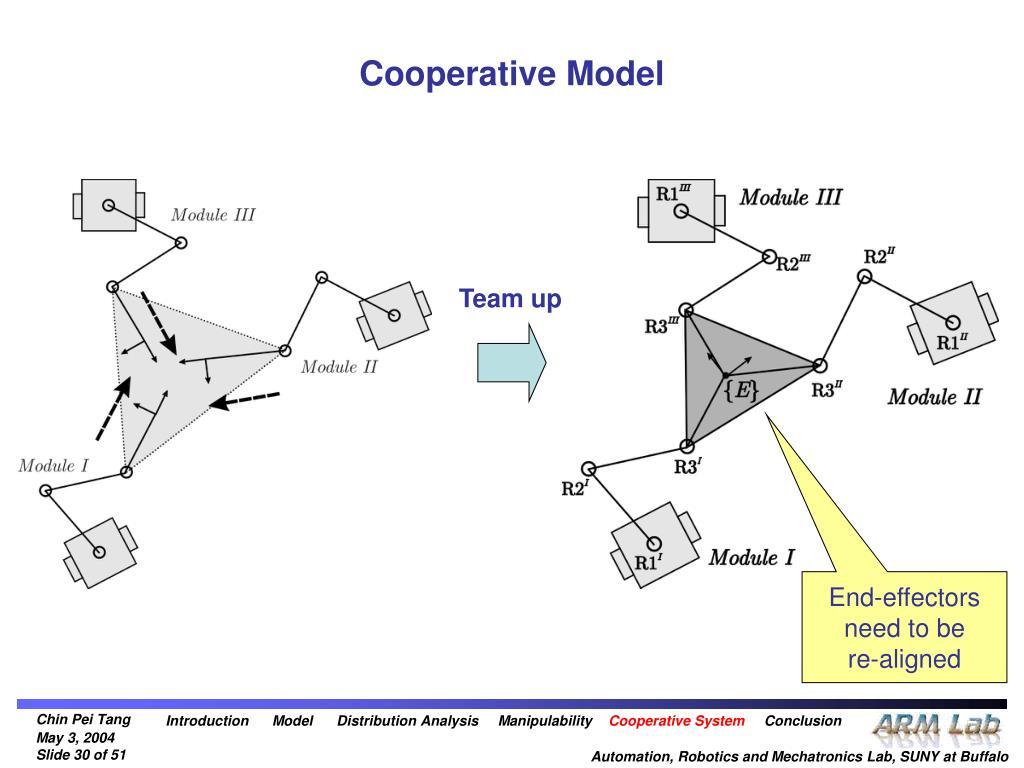Cooperative Model