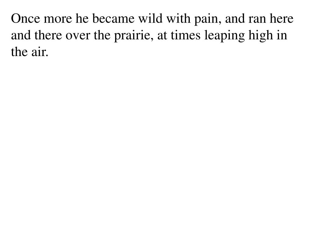 Once more he became wild with pain, and ran here and there over the prairie, at times leaping high in the air.