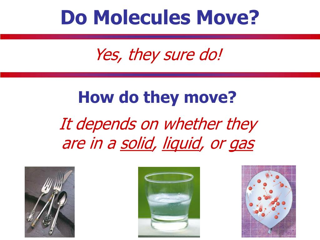 Do Molecules Move?