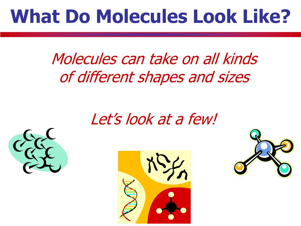 What Do Molecules Look Like?