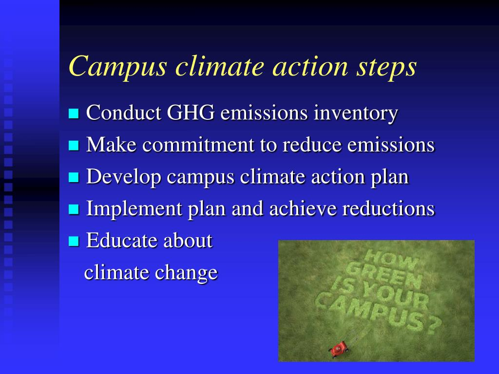 Campus climate action steps