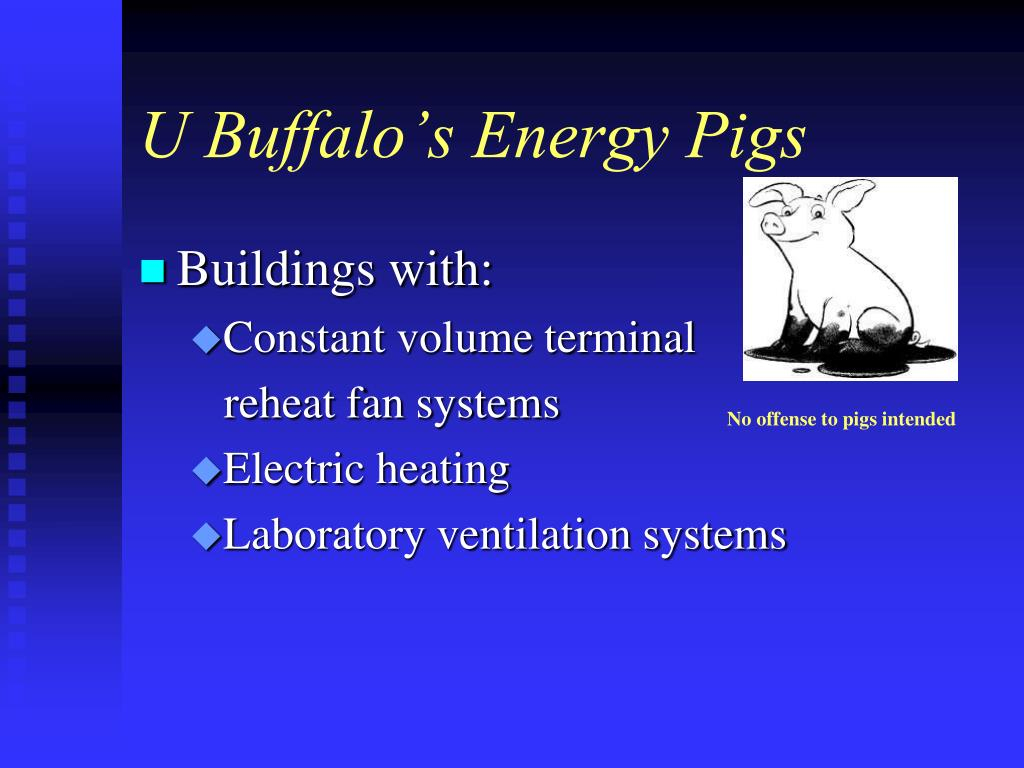 U Buffalo's Energy Pigs