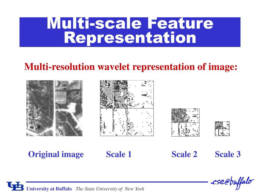 Multi-scale Feature Representation