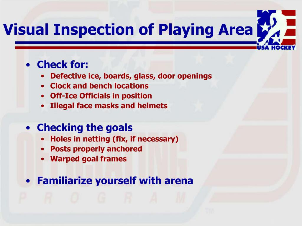 Visual Inspection of Playing Area